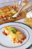 cannelloni Стоковое Изображение