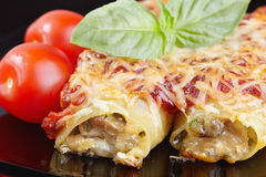 Free Cannelloni Royalty Free Stock Photography - 46634967