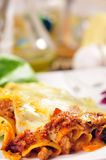 Cannelloni. Dishes from the Italian restaurant Royalty Free Stock Photo