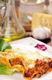 cannelloni Стоковая Фотография RF