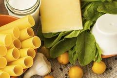 Cannelloni - concept à cuire culinaire Photos libres de droits