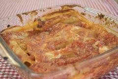 Cannelloni fait maison dans le plateau de cuisson Image libre de droits