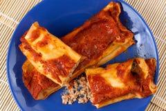 Cannelloni italien avec la viande de porc Images libres de droits