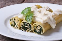 Cannelloni pasta stuffed with spinach and cheese with bechamel Stock Photography