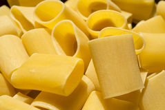 Cannelloni  paste Royalty Free Stock Photos
