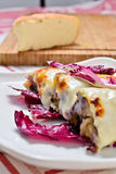 Cannelloni with radicchio and Taleggio cheese fondue Royalty Free Stock Photos