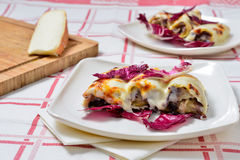Cannelloni with radicchio and Taleggio cheese fondue Stock Photography