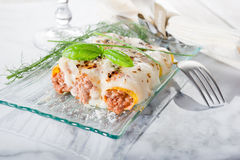 Cannelloni ragout Stock Photography