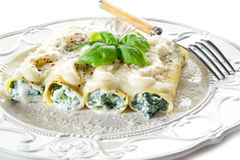 Cannelloni with ricotta and spinach stock image