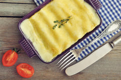 Cannelloni with ricotta and spinach Royalty Free Stock Photo
