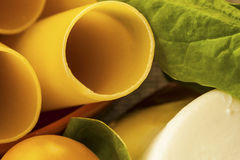 Cannelloni, ricotta and spinach closeup Royalty Free Stock Photography