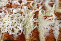 Cannelloni with shredded mozzarella cheese royalty free stock image