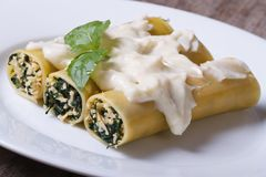 Cannelloni with spinach and cheese and bechamel sauce closeup Stock Image