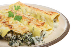 Cannelloni with Spinach and Pork Stock Photography