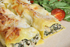 Cannelloni with Spinach and Pork Stock Images