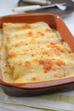 Cannelloni Royalty Free Stock Photos