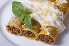 Cannelloni stuffed with meat and bechamel sauce top view Stock Image