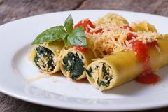 Cannelloni stuffed with spinach and cheese with tomato sauce Royalty Free Stock Photography