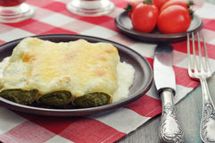 Cannelloni stuffed with spinach Stock Images