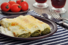Cannelloni stuffed with spinach Stock Photography
