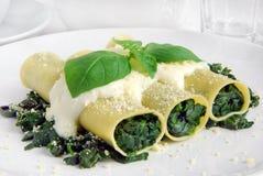 Cannelloni végétarien photo libre de droits