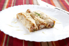 Cannellonis on a Plate Stock Images