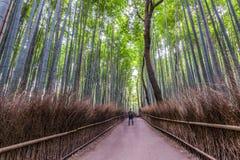 Cannelures de bambou d'Arashiyama Image libre de droits