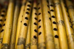 Cannelures en bois indiennes Image libre de droits