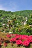 Cannero Riviera, lago Maggiore, Lago Maggiore, Italy imagens de stock