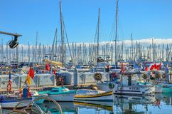 Forest of Sailboat Masts in Port Le Vieux - Cannes, France Stock Photos