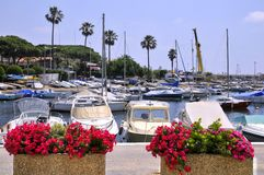 cannes france port royaltyfri bild