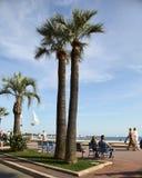 CANNES FRANCJA, LIPIEC, - 5, 2014 Drzewka palmowe na Croisette w C Obrazy Royalty Free