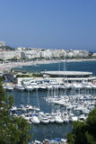 yachts Cannes marina south of france riviera  Royalty Free Stock Images