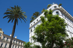 Cannes palm trees and luxury seafront building on French Riviera royalty free stock photos
