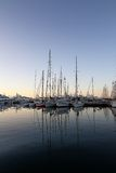 Cannes port in morning Royalty Free Stock Image