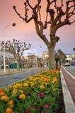 Cannes-Straßenansicht, Frankreich Stockbild