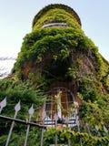 Cannes - Zielona powierzchowność dom zdjęcie royalty free