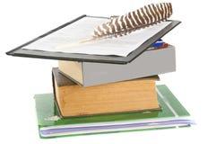 Cannette de plume sur des livres Photos stock