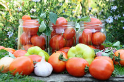 Canning Tomatoes At Home Royalty Free Stock Photography