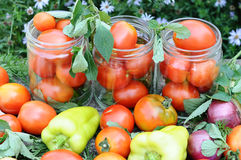 Canning tomatoes at home Stock Photos