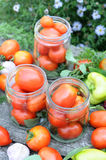 Canning tomatoes at home Stock Photography