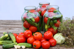 Canning of vegetables Royalty Free Stock Image