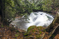 Cannings Fish-Eye View. Beautiful and well hidden Cannings Falls in fall Stock Photos