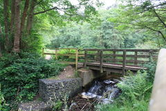 Cannock Chase. Bridge above a small waterfall Stock Images