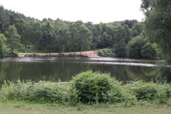 Cannock Chase. Lake surrounded by forest Royalty Free Stock Photography