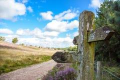 Cannock-Verfolgung Staffordshire England Lizenzfreie Stockfotos
