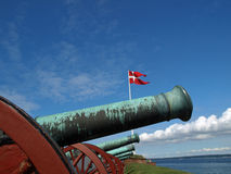 Cannon Royalty Free Stock Images