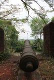Cannon. Nongnooch Garden at Chonburi, Thailand royalty free stock photos