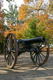 Cannon in Autumn (vertical) Stock Photo