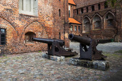 The cannon Royalty Free Stock Photos